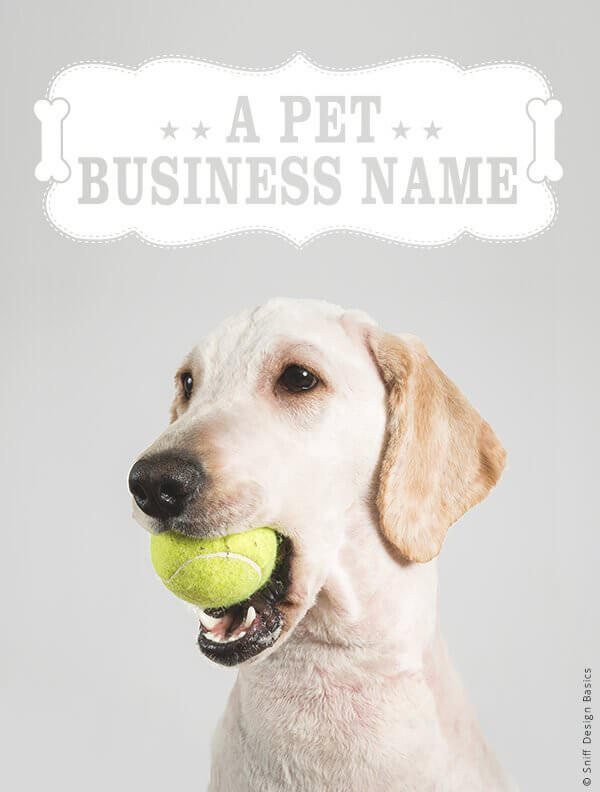 Ready-Made-Pet-Business-Logo-Design-Images-4-Showcase-WhiteOption-Modern-11