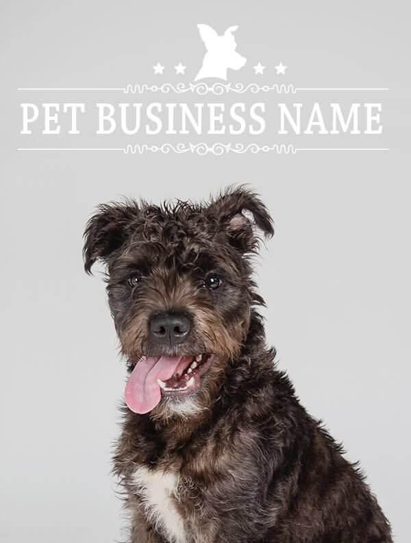Ready-Made-Pet-Business-Logo-Design-Images-4-Showcase-WhiteOption-Modern-3