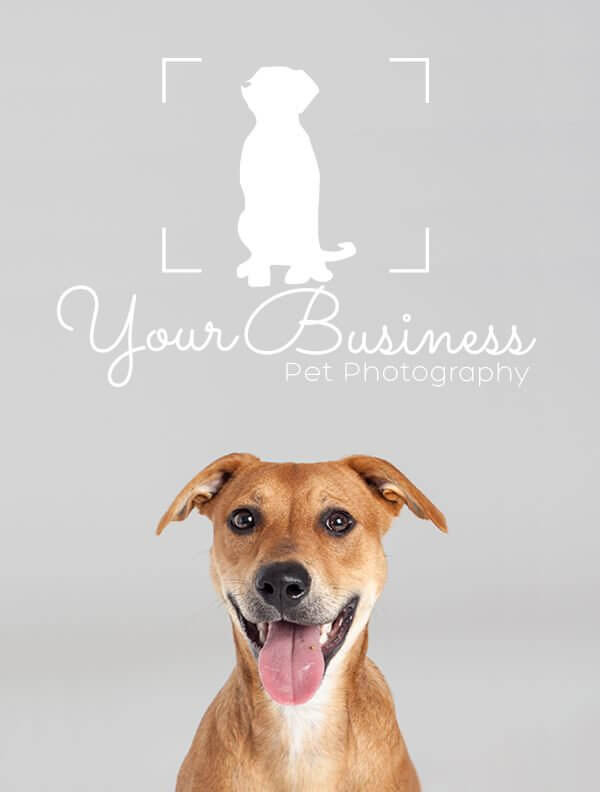 Ready-Made-Pet-Business-Logo-Design-Images-4-Showcase-WhiteOption-Modern-8
