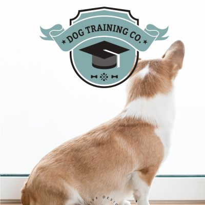 Dog Training Academy Premade Pet Business Branding Kit Design For Sale by Sniff Design Basics