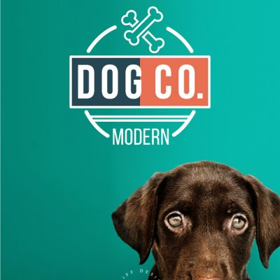 Modern Dog Co Pre Made Pet Branding Kit Design Pet Logo